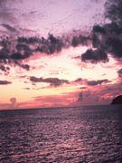 lilac sunset free e card