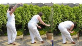 a qigong movement for backs