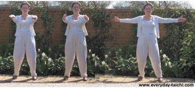 taiji qigong move lower the arms