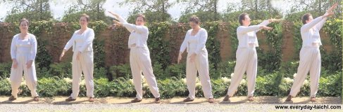qigong exercise wild goose looks for food
