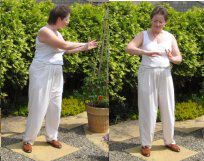 chi gung exercise - autumn breeze blows the leaves
