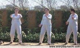 shibashi shibashi-move-ment rolling the arms