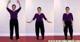 18 movements shibashi